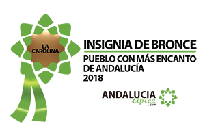 InsigniaBRONCE2018